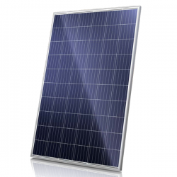 Solar module CanadianSolar Poly 290Wp 60 cells (CS6K-290P)